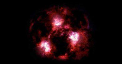 Galaxie XMM-2599