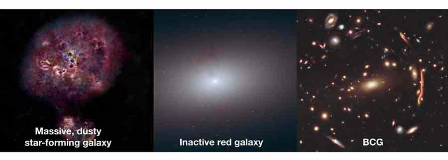 Galaxie XMM-2599 Big Bang