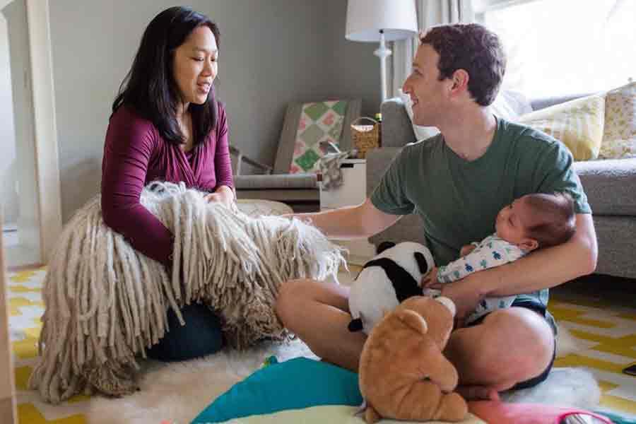 Mark Zuckerberg chien